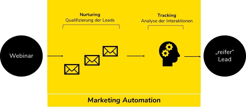 Fanomena_Leads_Marketingautomatisierung
